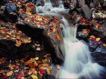 Осень – время собирать камни. Подводим итоги